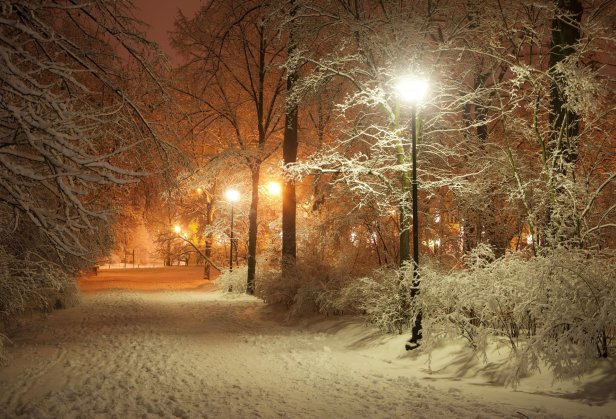 romantic-evening-winter-park-alley-lanterns-road-nature-beautiful-scene-landscape-lamppost-lamp-night-midnight-lights-a-romantic-evening-winter-park-alley-lamps-road-nature-beautiful-scene-landscape-l.jpg